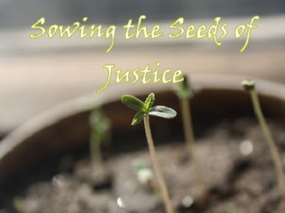 Sowing the Seeds of Justice